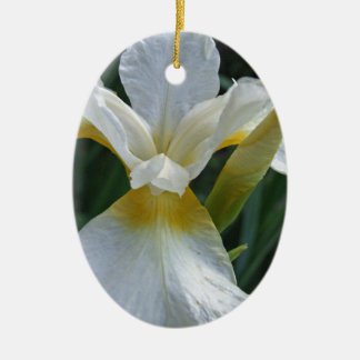 Ivory Iris Ceramic Oval Decoration