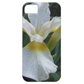 Ivory Iris iPhone 5 Cases