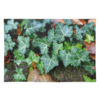 Ivy and field stone placemat