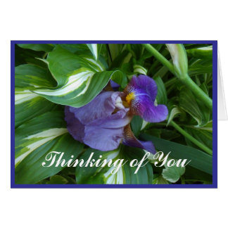 Ivy and Iris Note Card