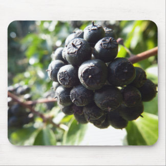 Ivy Berries Mousepad