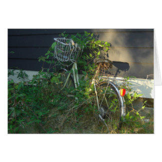 ivy covered bike card