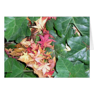Ivy Cradling Maple Leaves Card