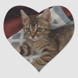 Ivy -  Tabby Rescue Kitty Heart Sticker