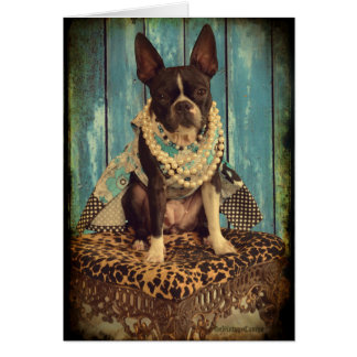 Ivy the Boston Terrier Card