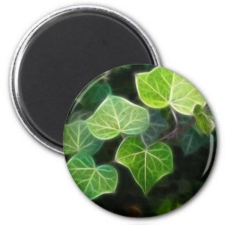 Ivy Vine 4 Magnet