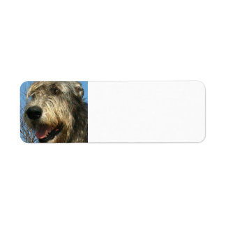 iw.png return address label