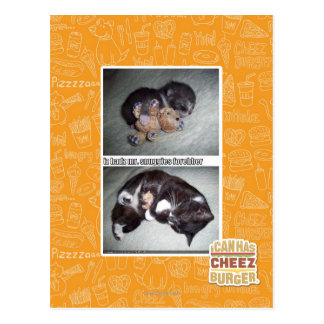 iz hadz mr. snuggies forebber postcard