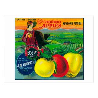 J.M.L. Apple Crate LabelWatsonville, CA Postcard