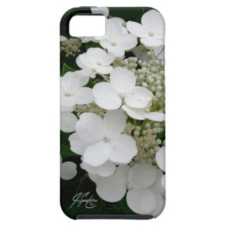 J Spoelstra White Floral iPhone SE/5s Case