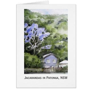 Jacarandas in Patonga, NSW, Australia Card
