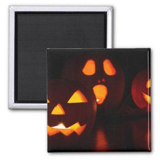 Jack-O-Lantern Pumpkins Magnets