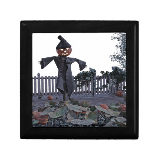 Jack O Scarecrow in a Pumpkin Patch Gift Box