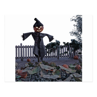 Jack O Scarecrow in a Pumpkin Patch Postcard