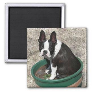 Jack pot square magnet