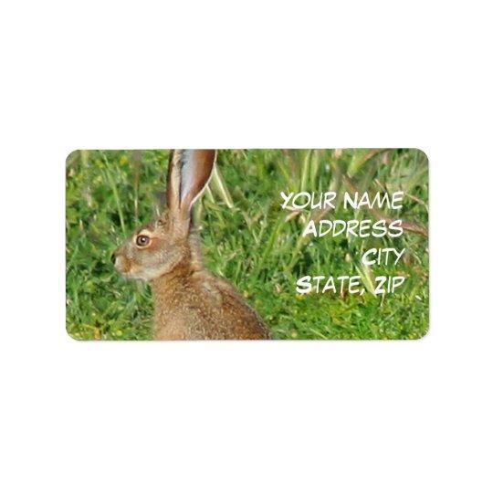 Jack Rabbit Address Labels