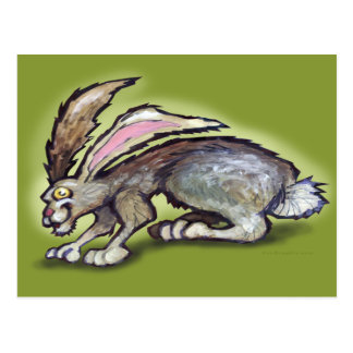 Jack Rabbit Postcard