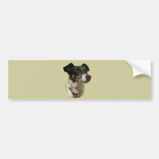 Jack Russell Dog bumper sticker