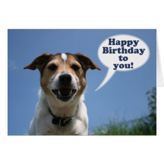Jack Russell dog Happy Birthday card