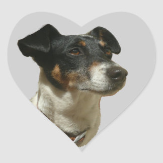 Jack Russell Dog heart sticker