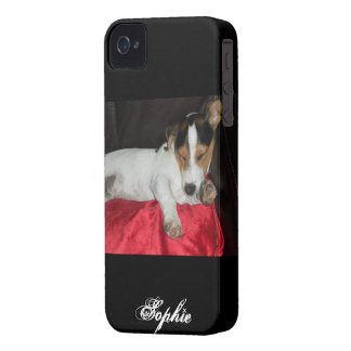 jack russell iPhone 4 cases