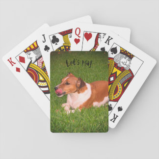 Jack Russell playing cards