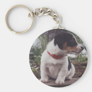 Jack Russell puppy Key Ring