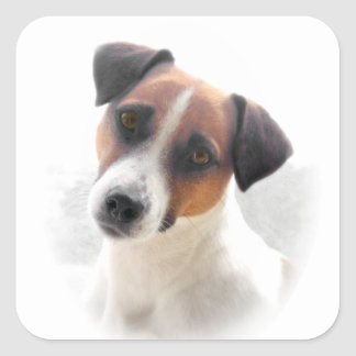 Jack Russell sheet of Stickers