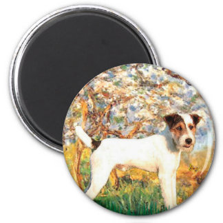 Jack Russell (T) - Spring Magnet