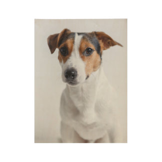 Jack russell terrer wood poster