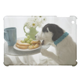 Jack russell terrier. 2 case for the iPad mini
