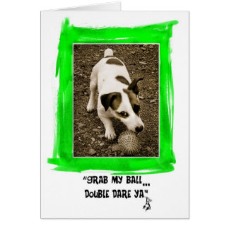 Jack Russell Terrier Card