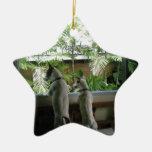 Jack Russell Terrier Ceramic Star Decoration
