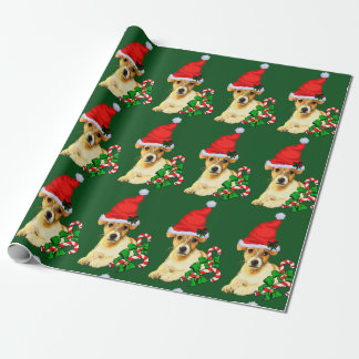 Jack Russell Terrier Christmas