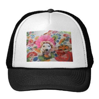 Jack Russell Terrier Mesh Hats