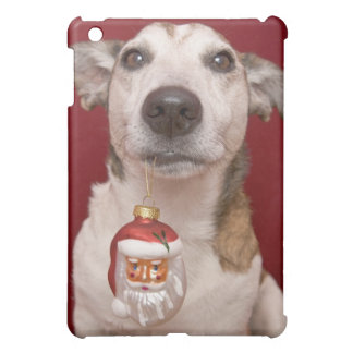 Jack Russell Terrier Holding Christmas Ornament iPad Mini Covers