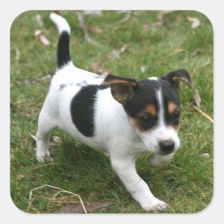 Jack Russell Terrier Puppy Sticker Sheet #1