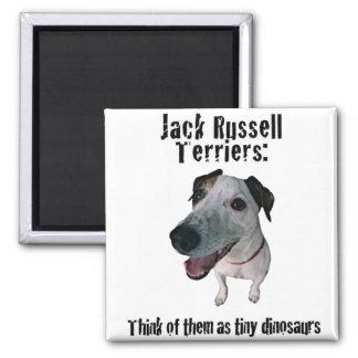 Jack Russells: tiny dinosaurs Magnet