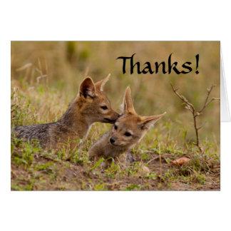 Jackal Cub Thank You Card