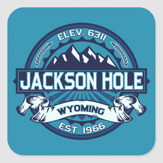 Jackson Hole Ice Square Sticker