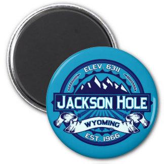 Jackson Hole Magnet Ice