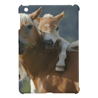 Jade Equestrian Cover For The iPad Mini