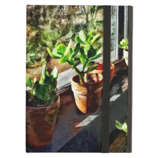 Jade Plants in Greenhouse iPad Air Case