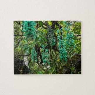 Jade Vine, Botanical Garden, Maui, Hawaii, USA Jigsaw Puzzle
