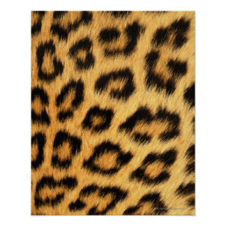 Jaguar Fur Poster
