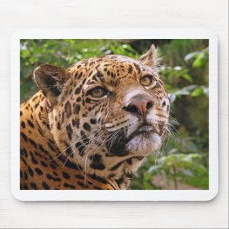 Jaguar Inquisitive Mouse Pad