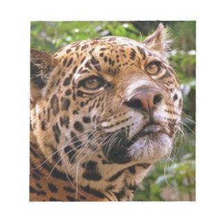 Jaguar Inquisitive Notepad