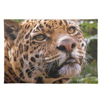 Jaguar Inquisitive Placemat