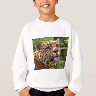 Jaguar Inquisitive Sweatshirt