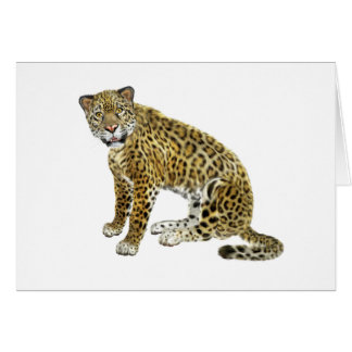 Jaguar Looking with Intent Card